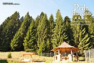 Perla Bucovinei